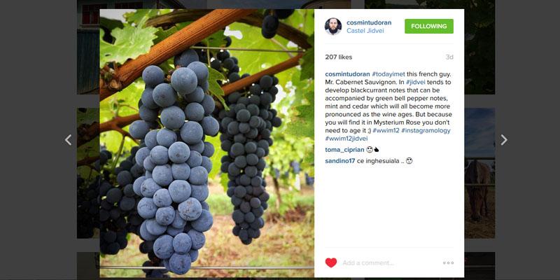 Cosmin Tudoran Instagram 2
