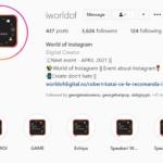 World of Digital Instagram Bio